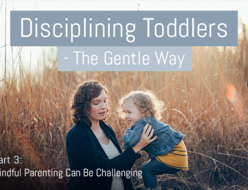 Discipline Your Toddler Effectively – The Gentle Way – Part 3